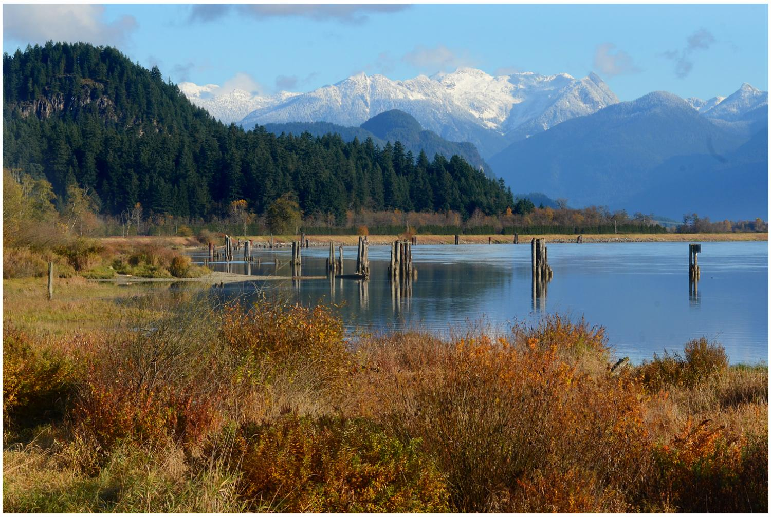 Pitt River Autumn